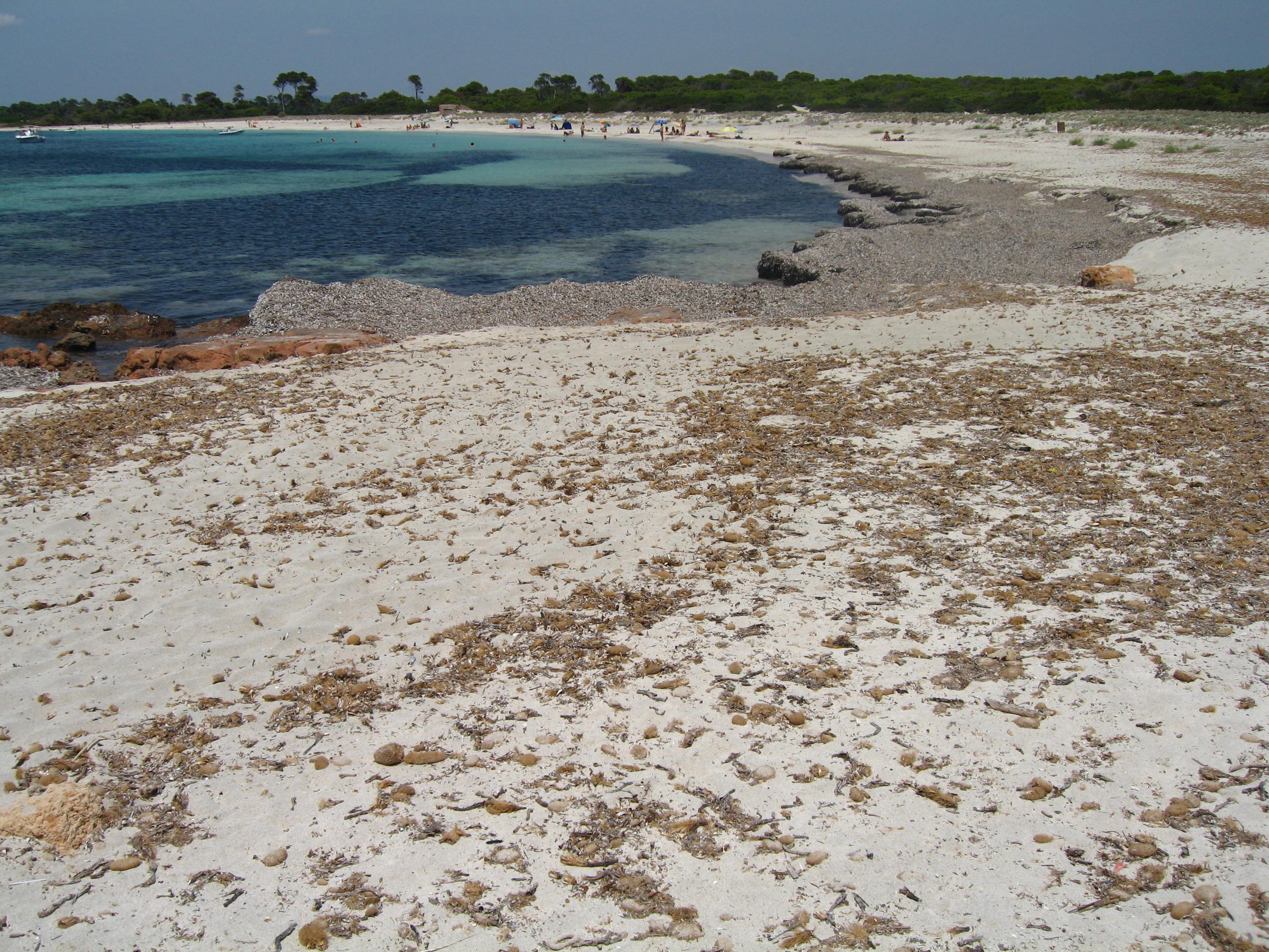 Foto playa Es Caragol. es caragol