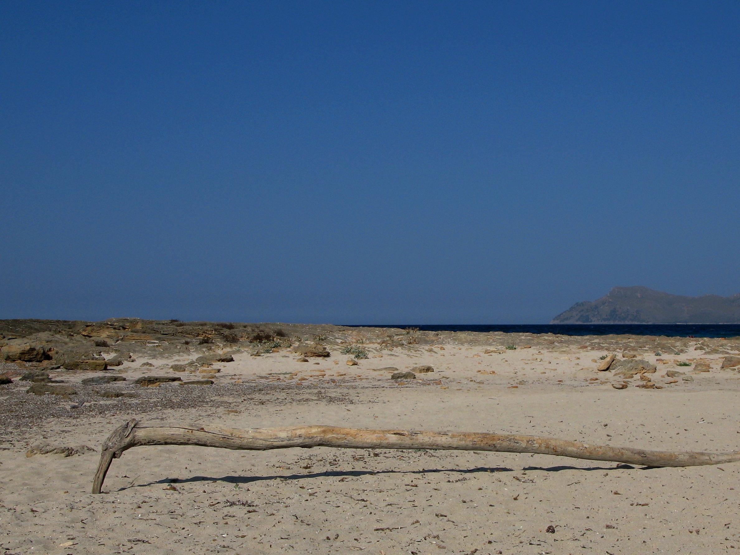 Foto playa Cala Serralot. Golós formiguer