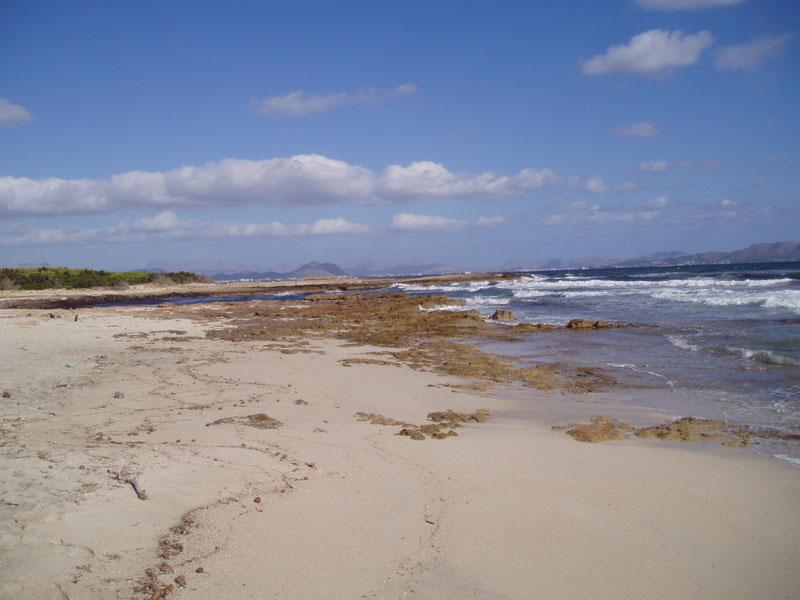 Foto playa Cala Serralot. Mal2