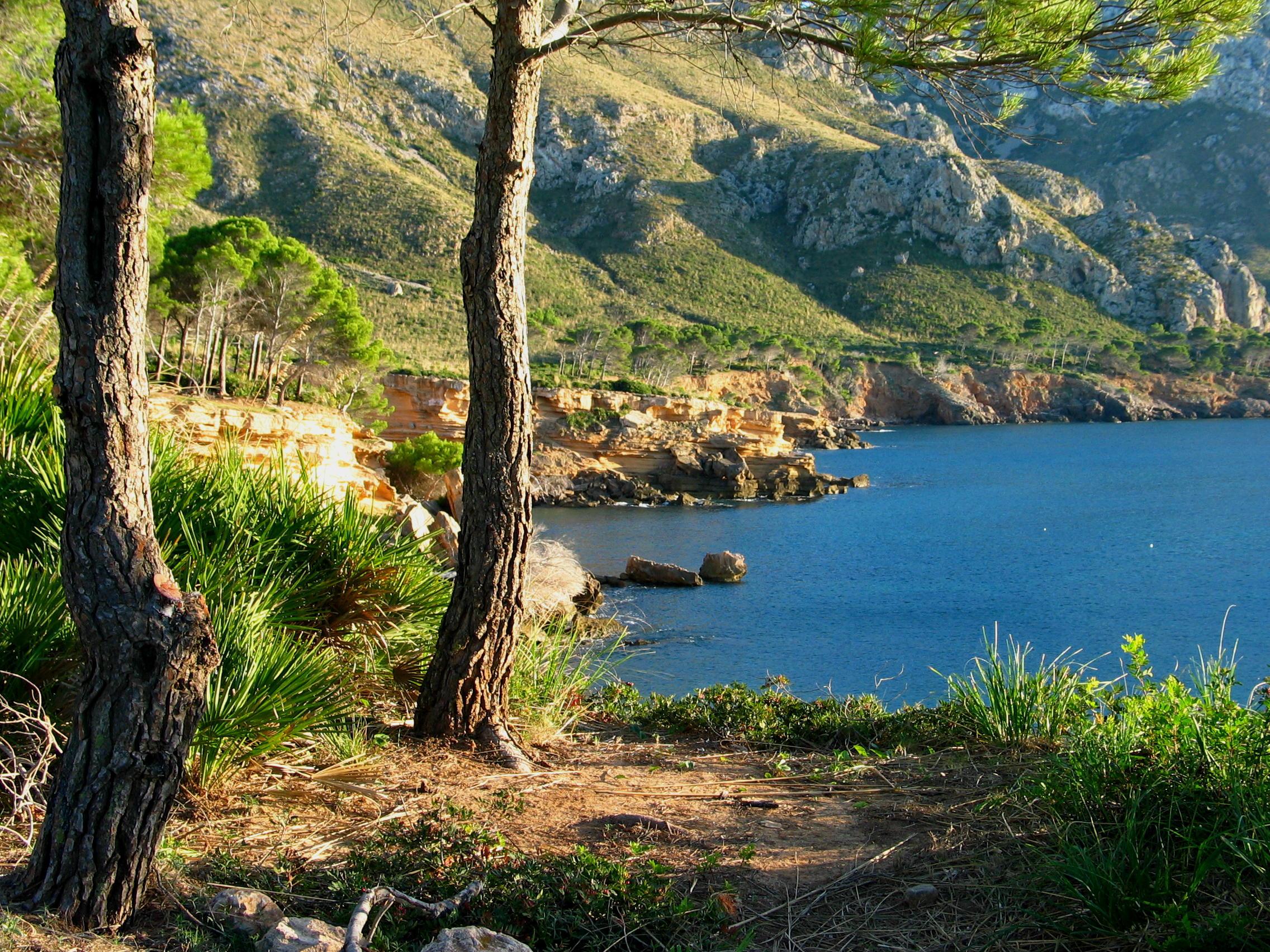 Foto playa Es Caló. Es Calo-2 AL