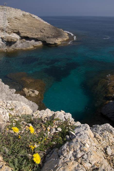 Foto playa Cala es Matzoc.