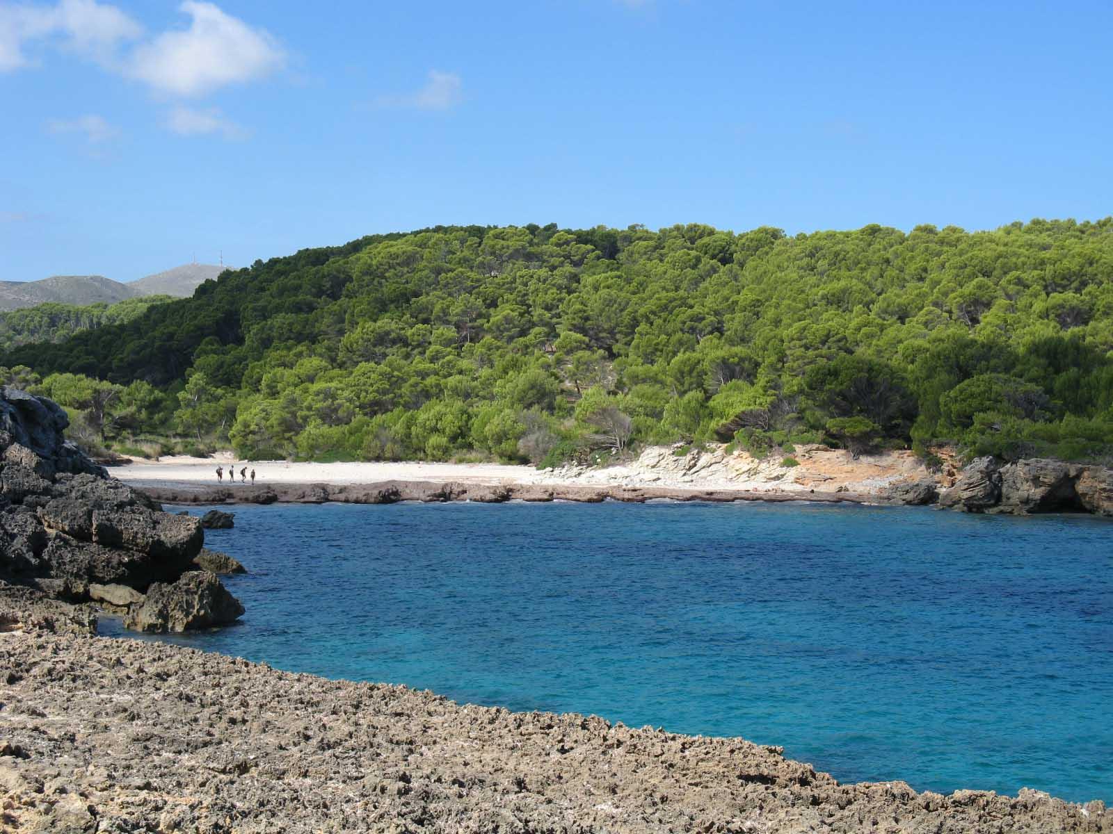 Foto playa Cala es Matzoc. Es Matzoc