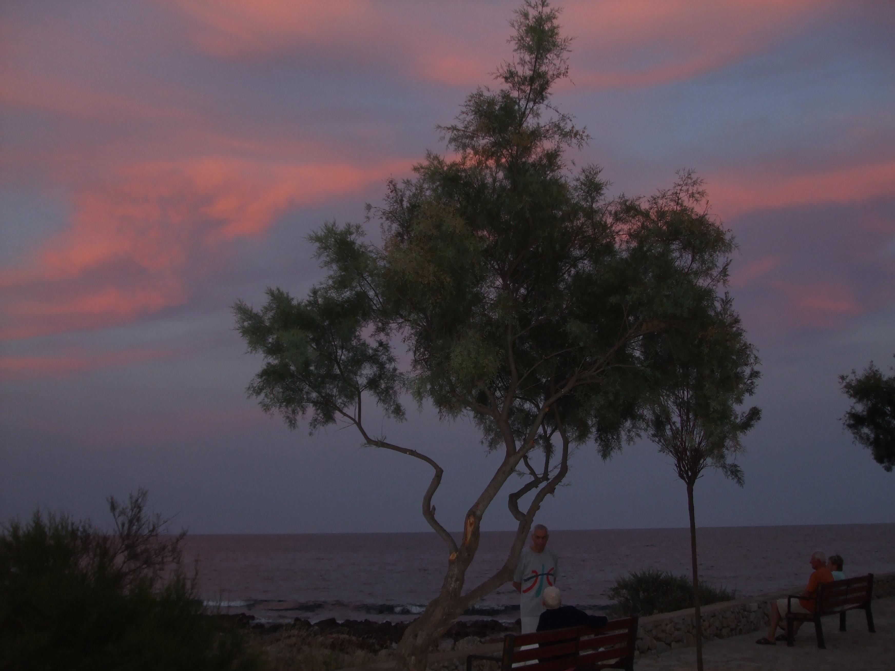 Foto playa Cala Millor / Cala Nau / Son Moro. Cala Bona Sunset.