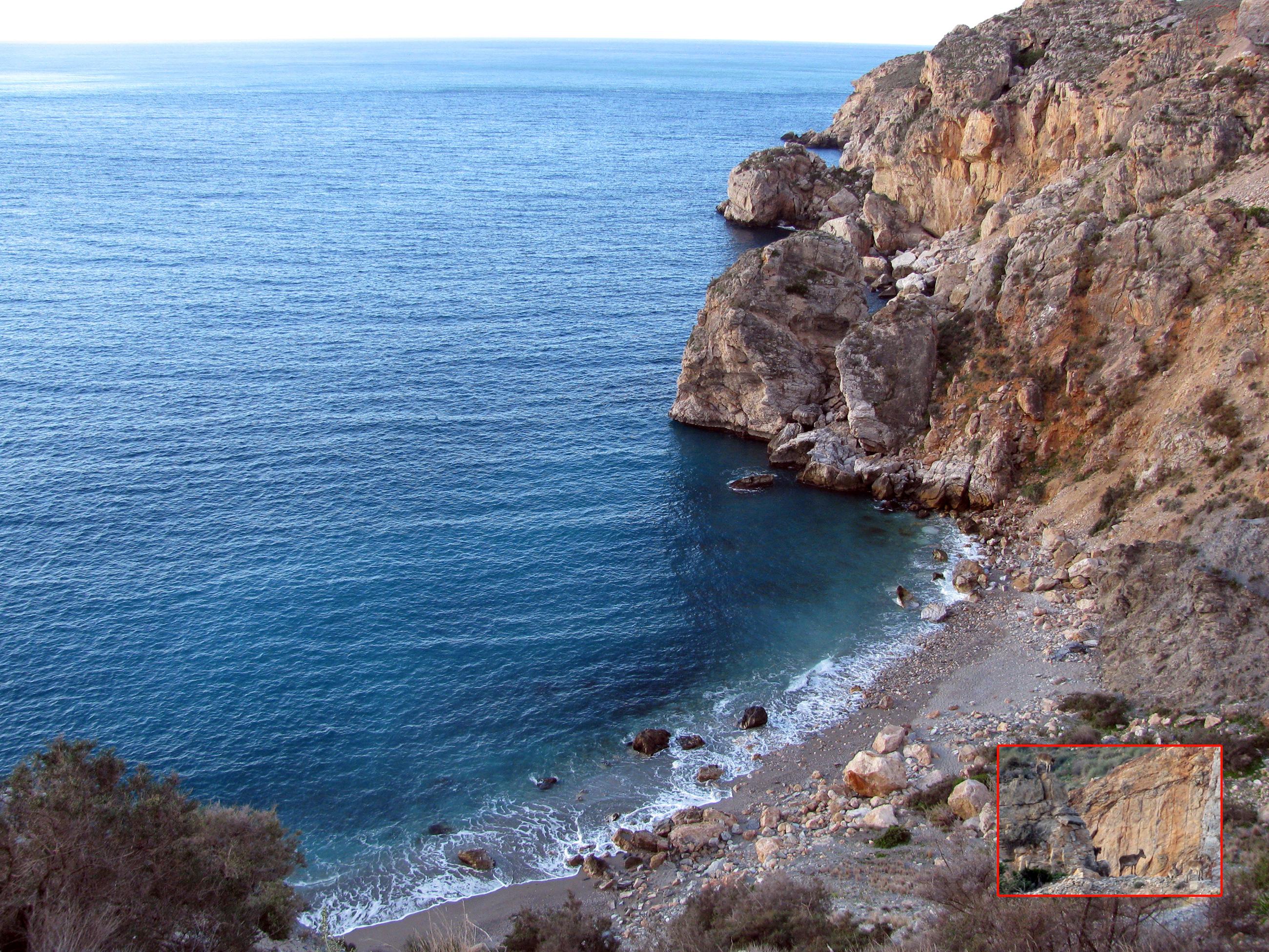 Foto playa La Rijana. Playa Castell y ciervos