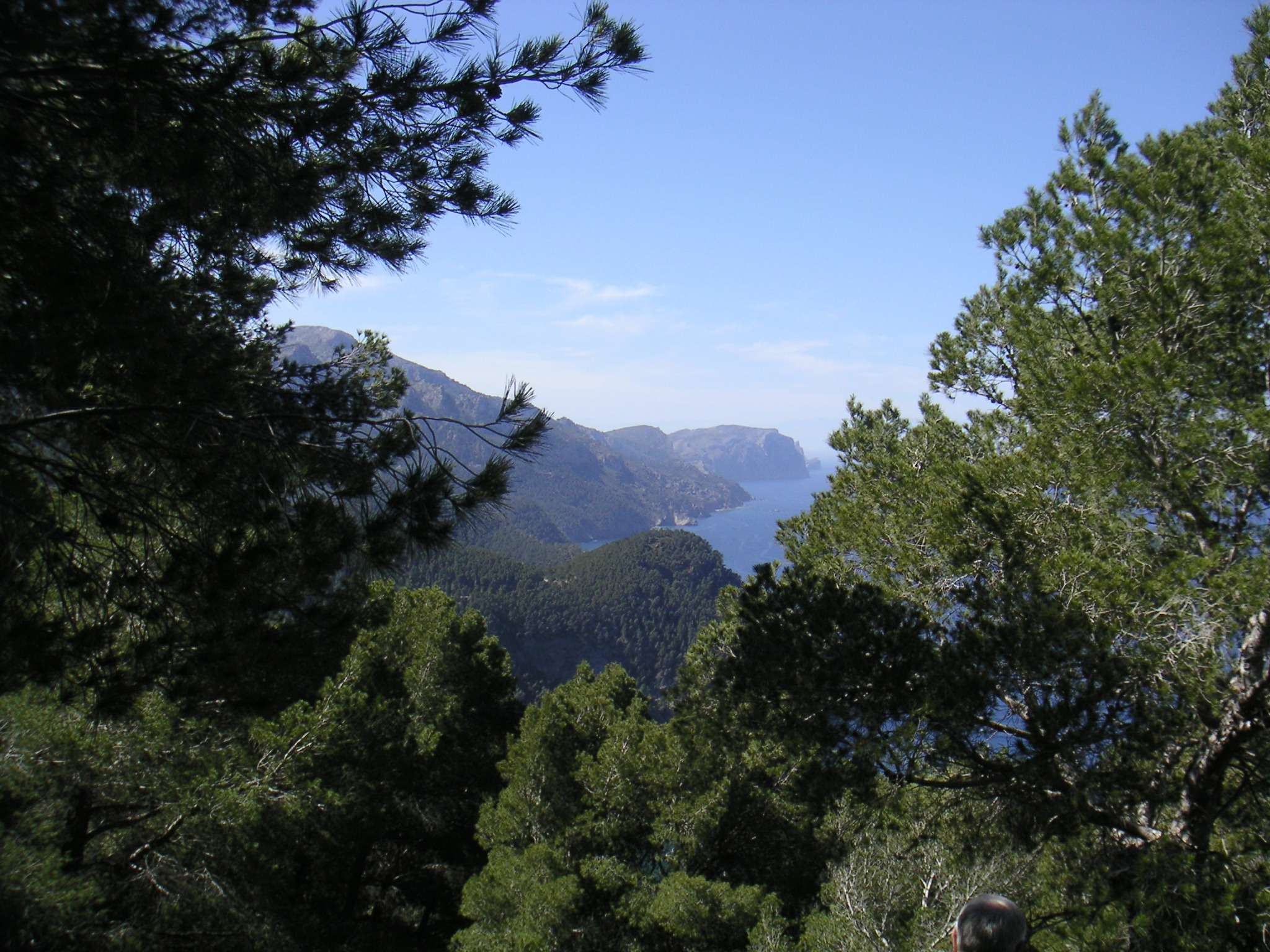 Foto playa Sa Font Figuera. Majorka