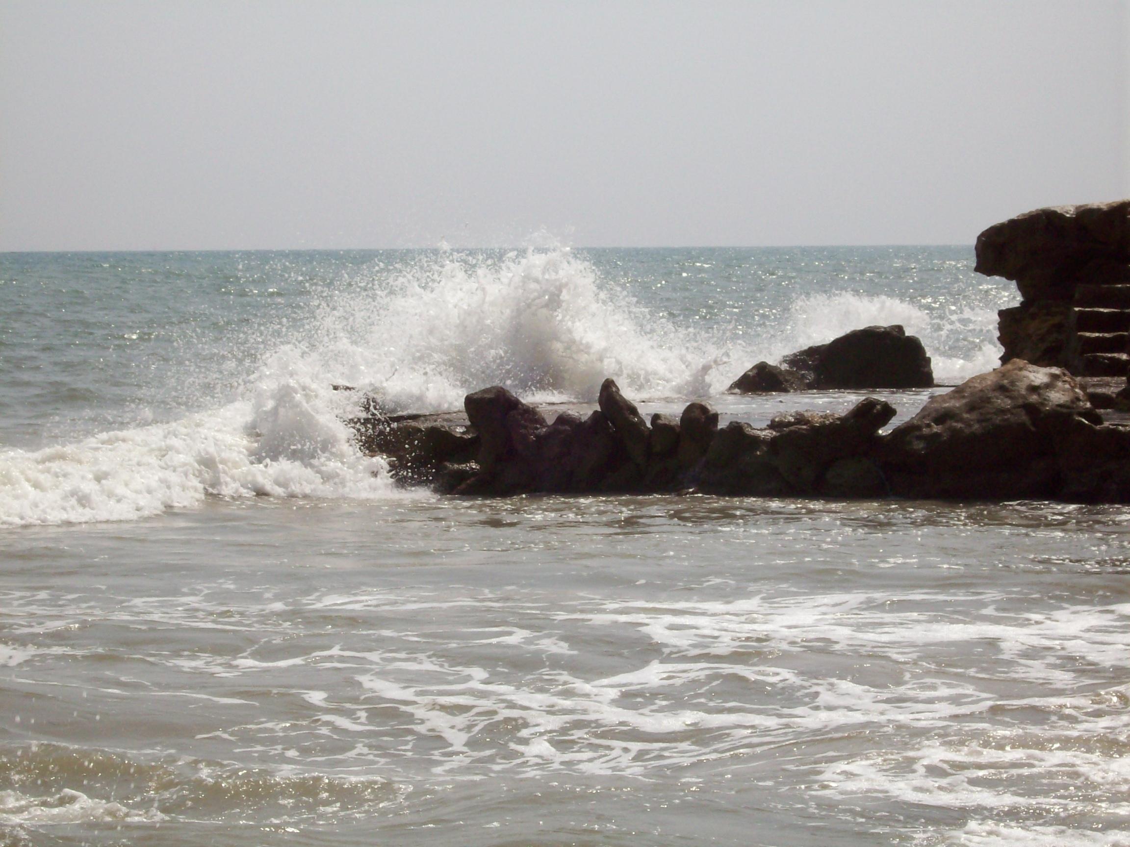 Foto playa Port Vell. port verd