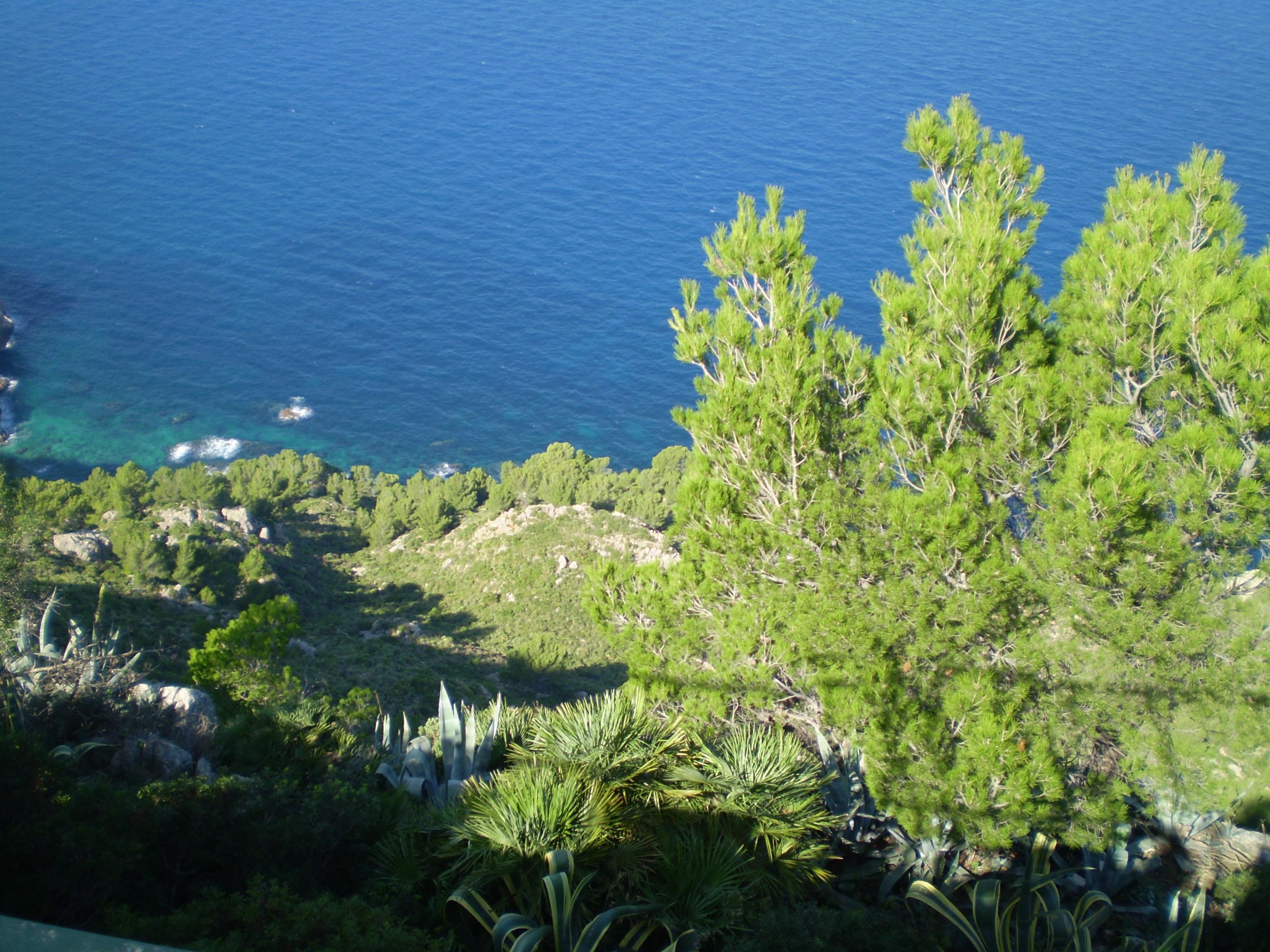 Foto playa Cala Egos / Caló de ses Egües. Das Meer von dem Bergen aus gesehen