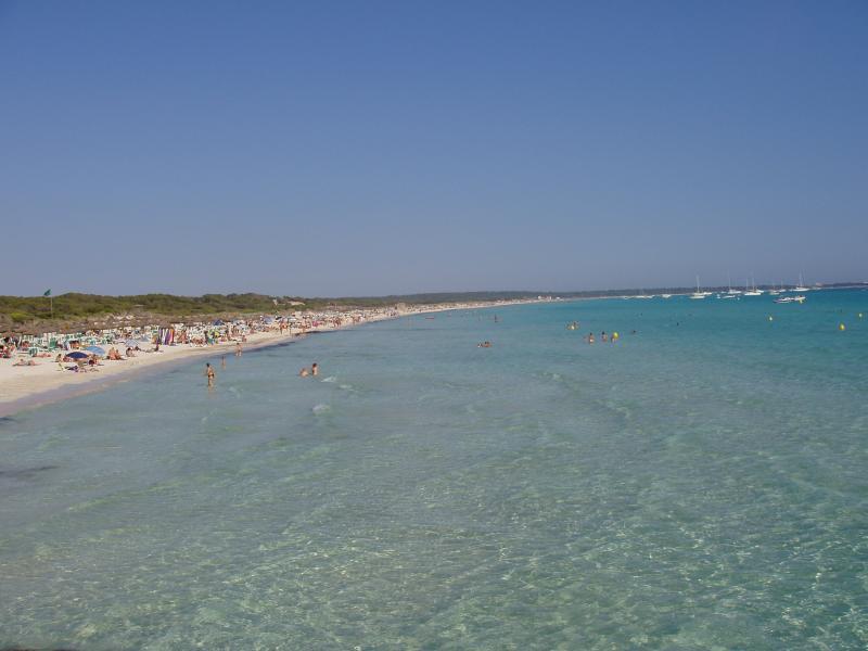 Foto playa Ses Covetes. Naturaleza y transpariencia