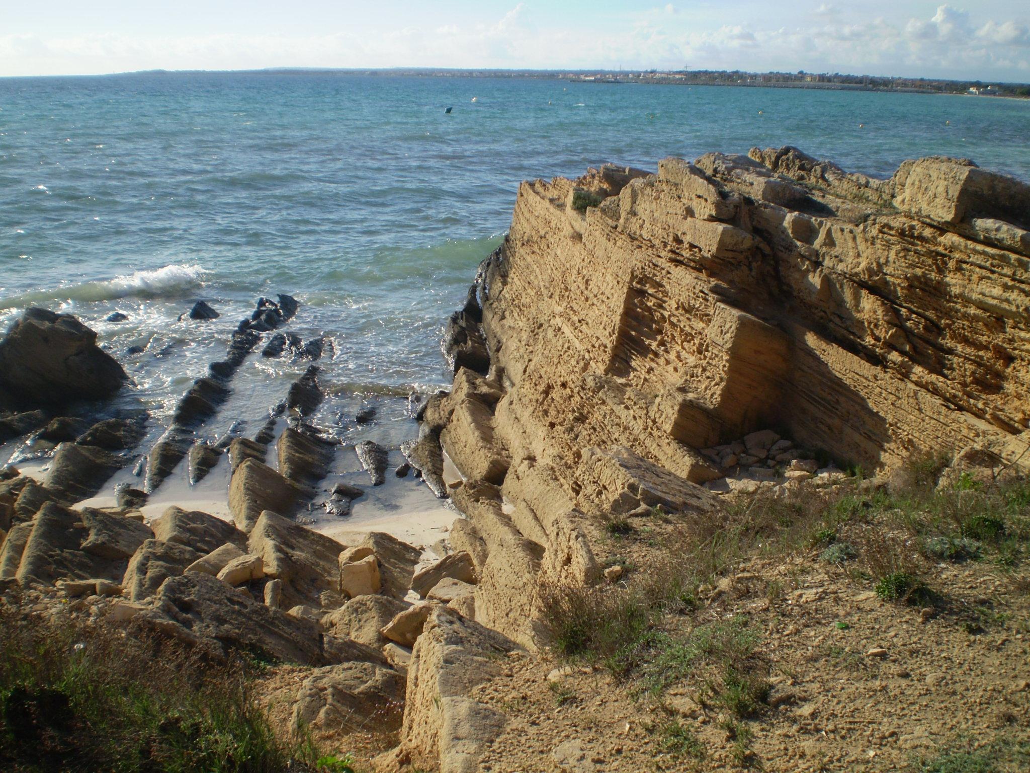 Foto playa Cala Pi. An der Küste