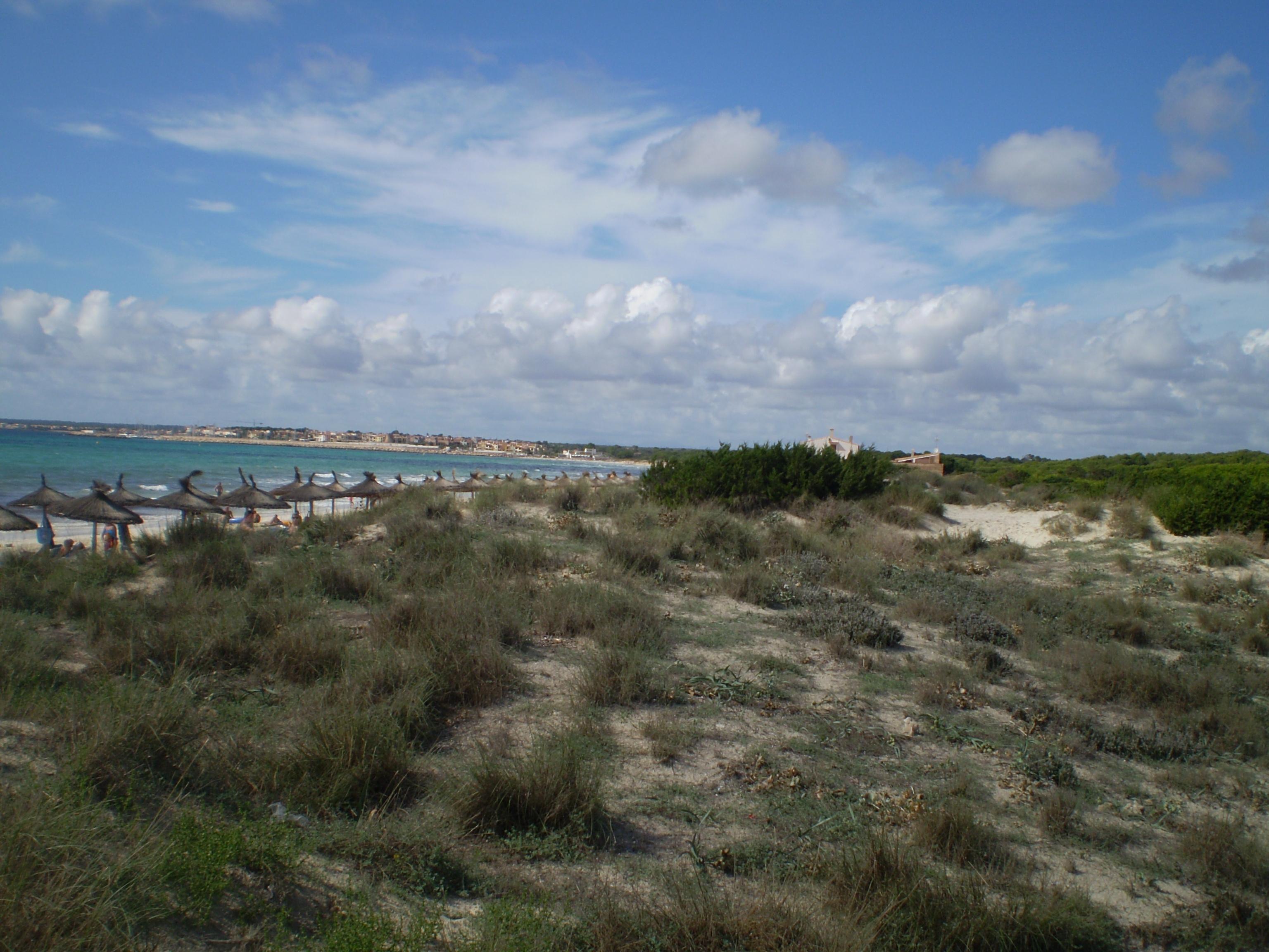 Foto playa Cala Pi. Der FKK Strand von Mallorca