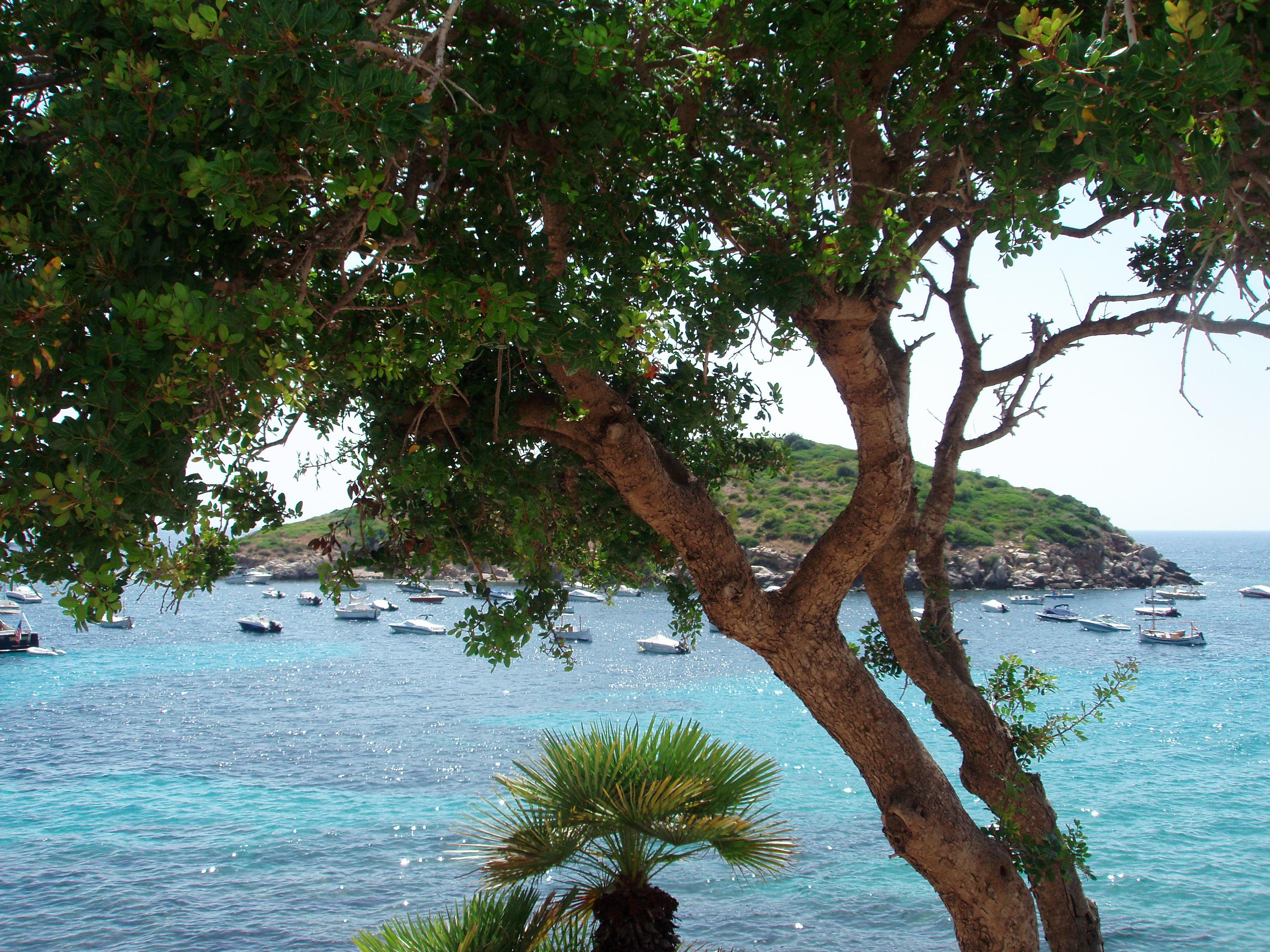 Foto playa Cala En Cucó. Isla Pantaliu-Sant Elm