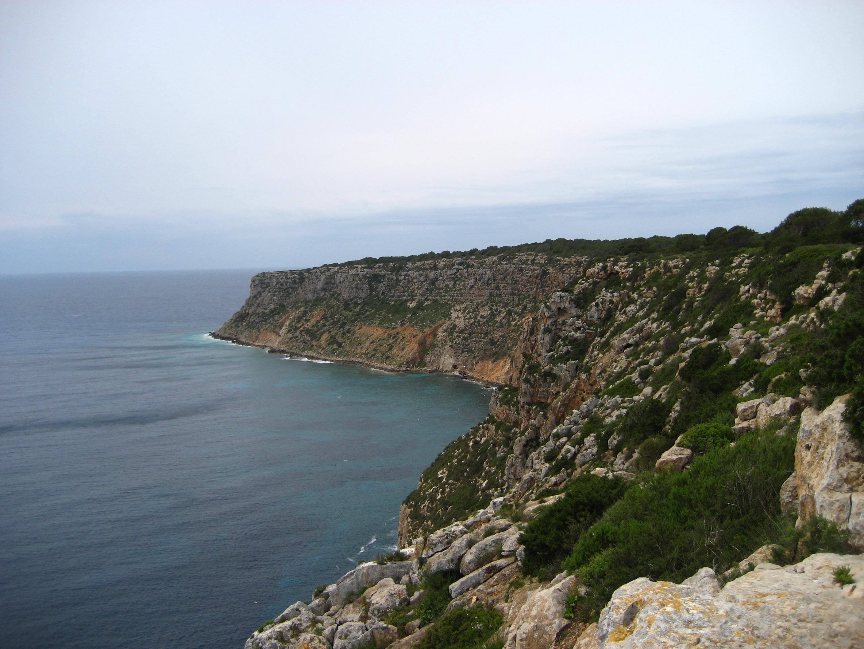 Playa Cala Codolá