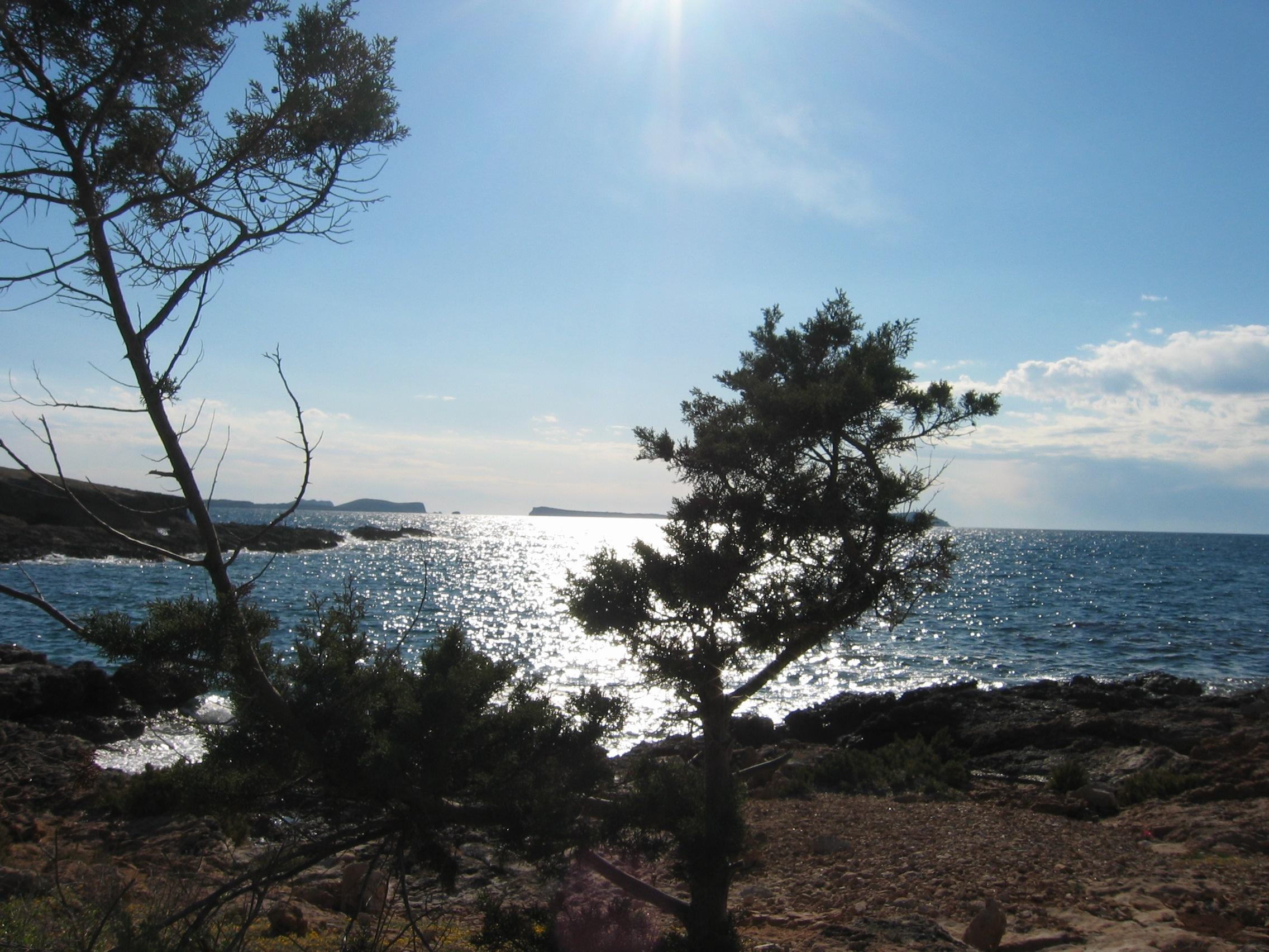Foto playa Cala Gració. Paisaje Ibicenco