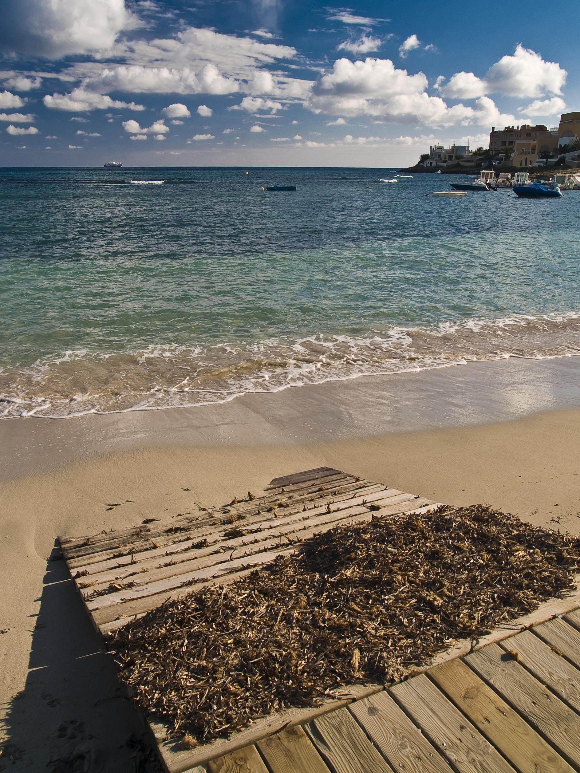 Foto playa Punta de Baix. Desembre 2007 a Talamanca