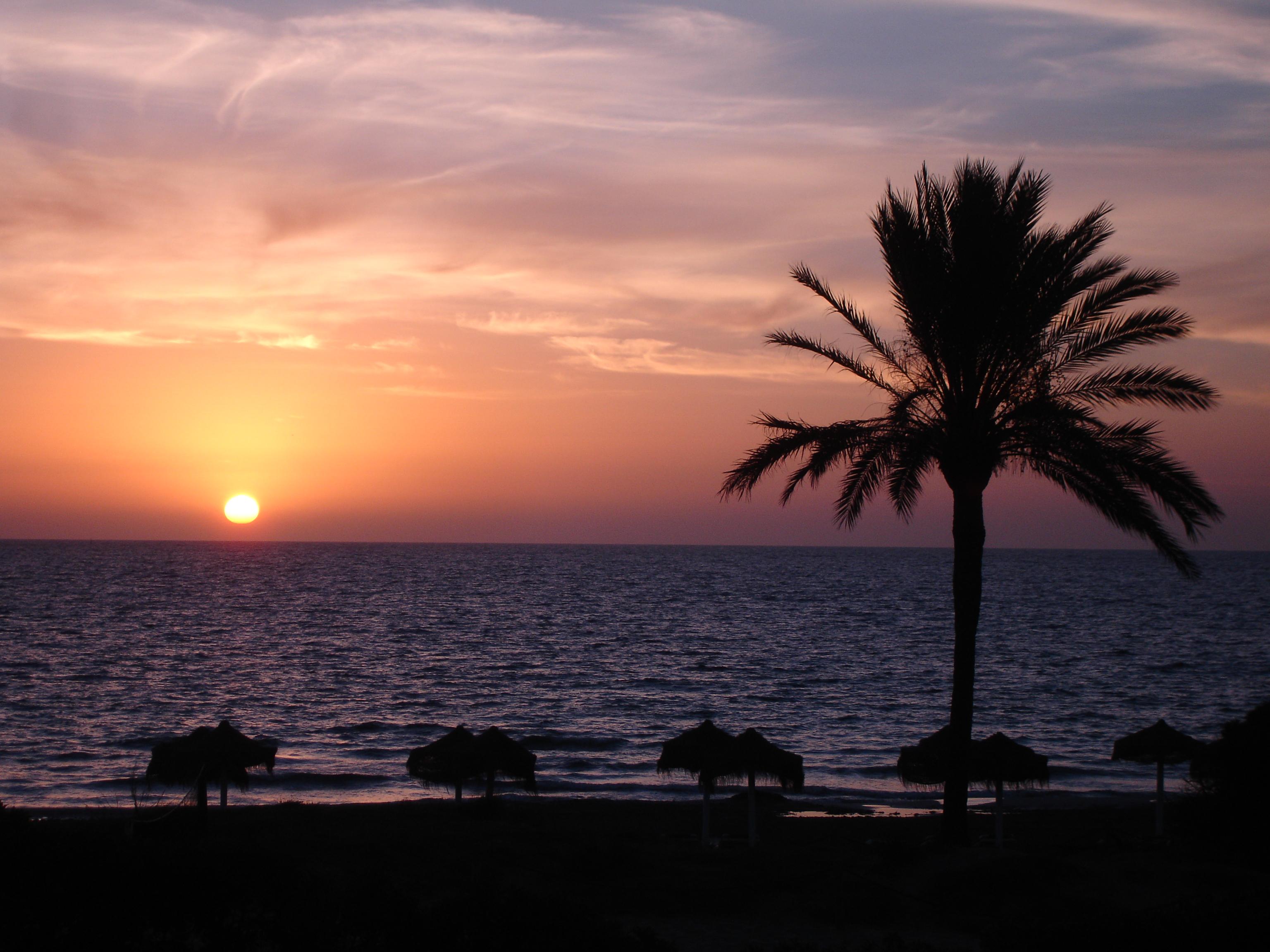 Foto playa En Bossa. Ibiza - Platja d´en Bossa