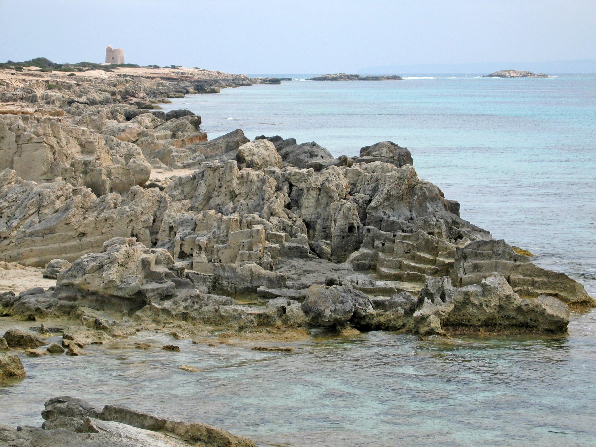 Foto playa Ses Salines / Mitjorn. Platge de ses Salines