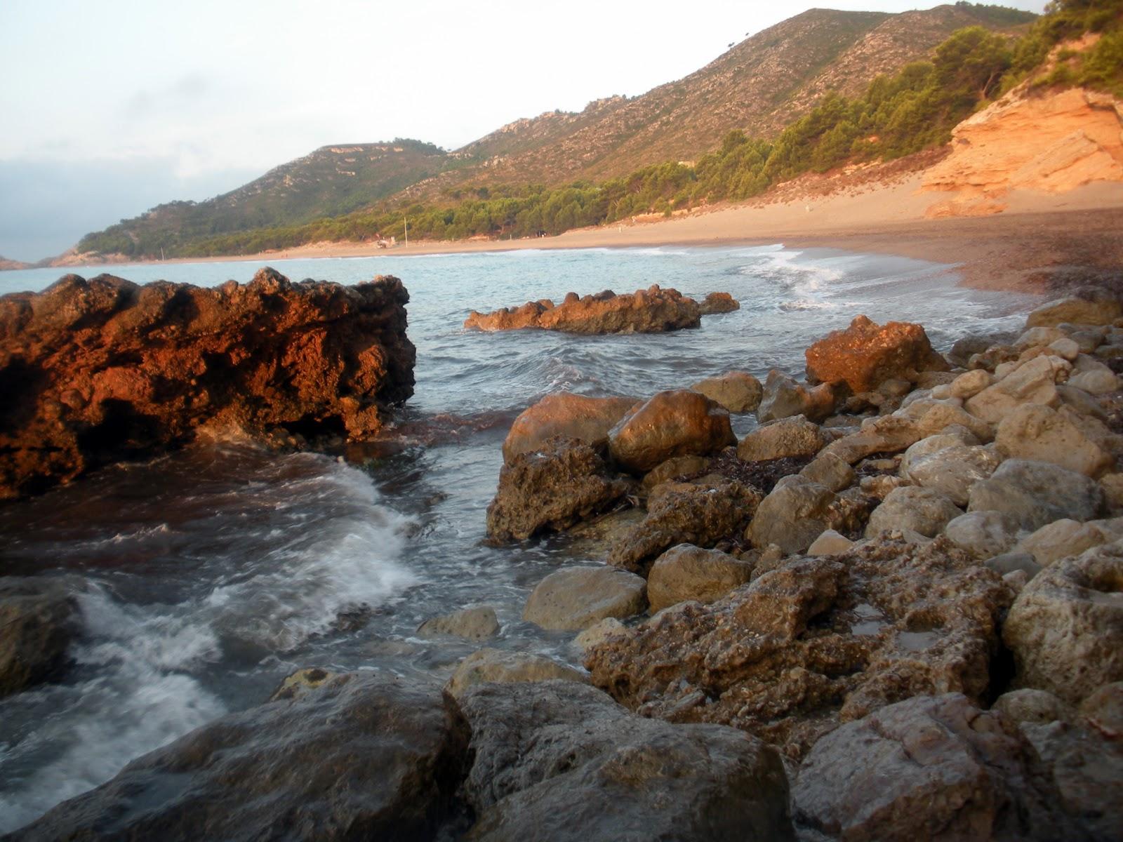 Foto playa Platja Naturista.