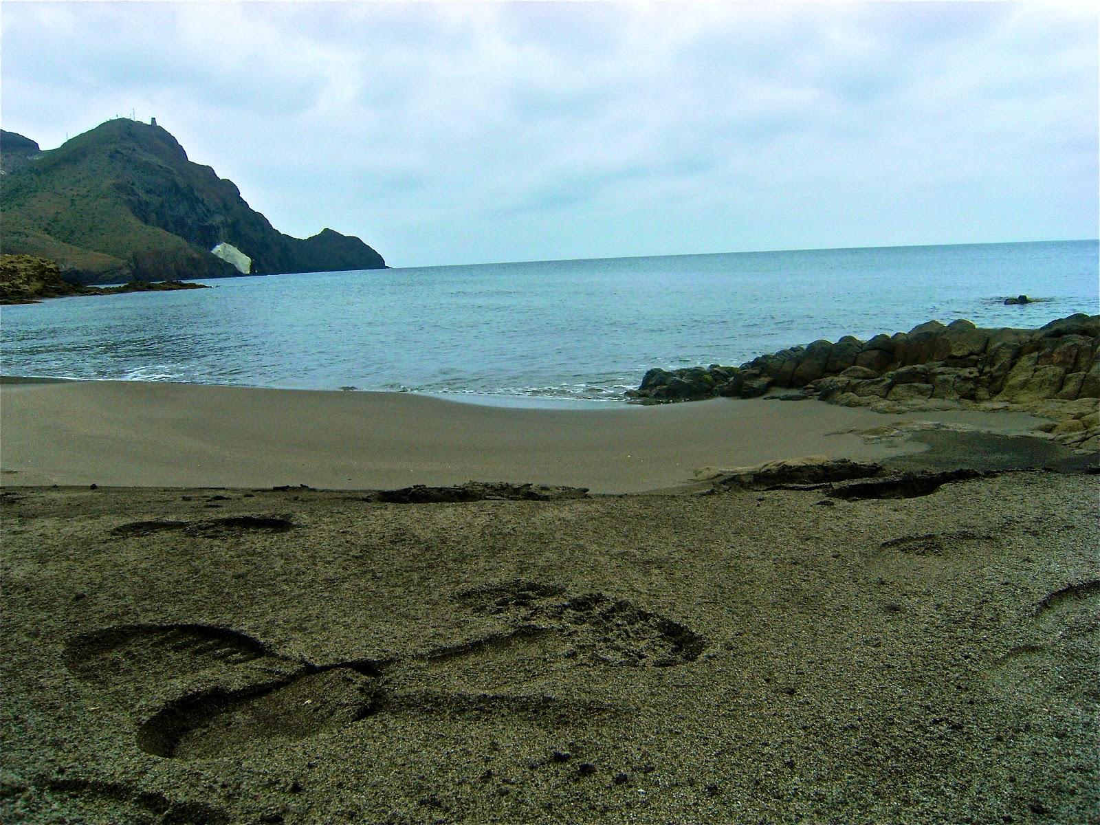 Foto playa Cala Arena.