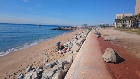 Foto playa Platja de la Mora.