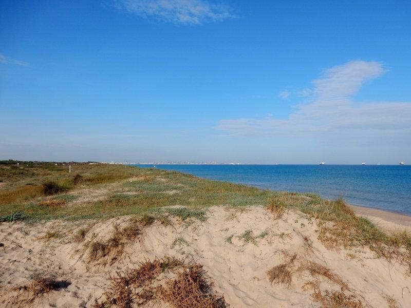 Foto playa La Garrofera.