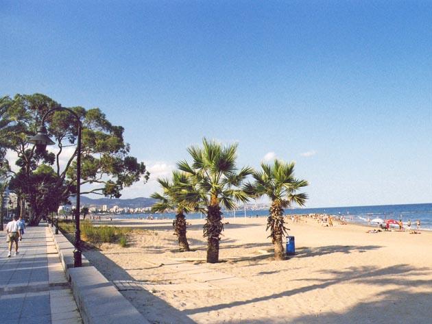 Foto playa Playa de la Caracola.