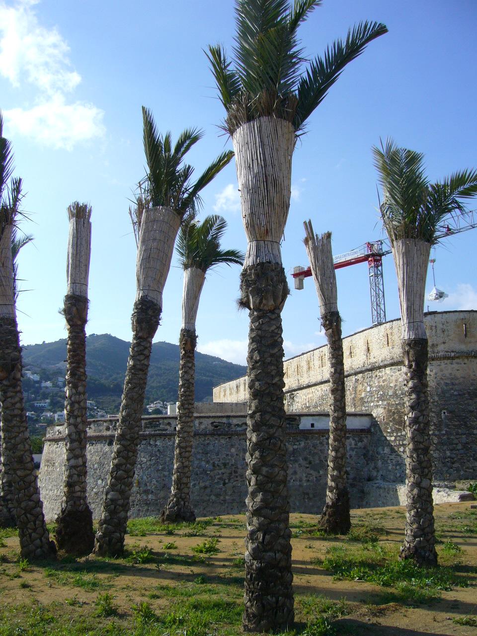 Foto playa La Herradura. castillo de la Herradura