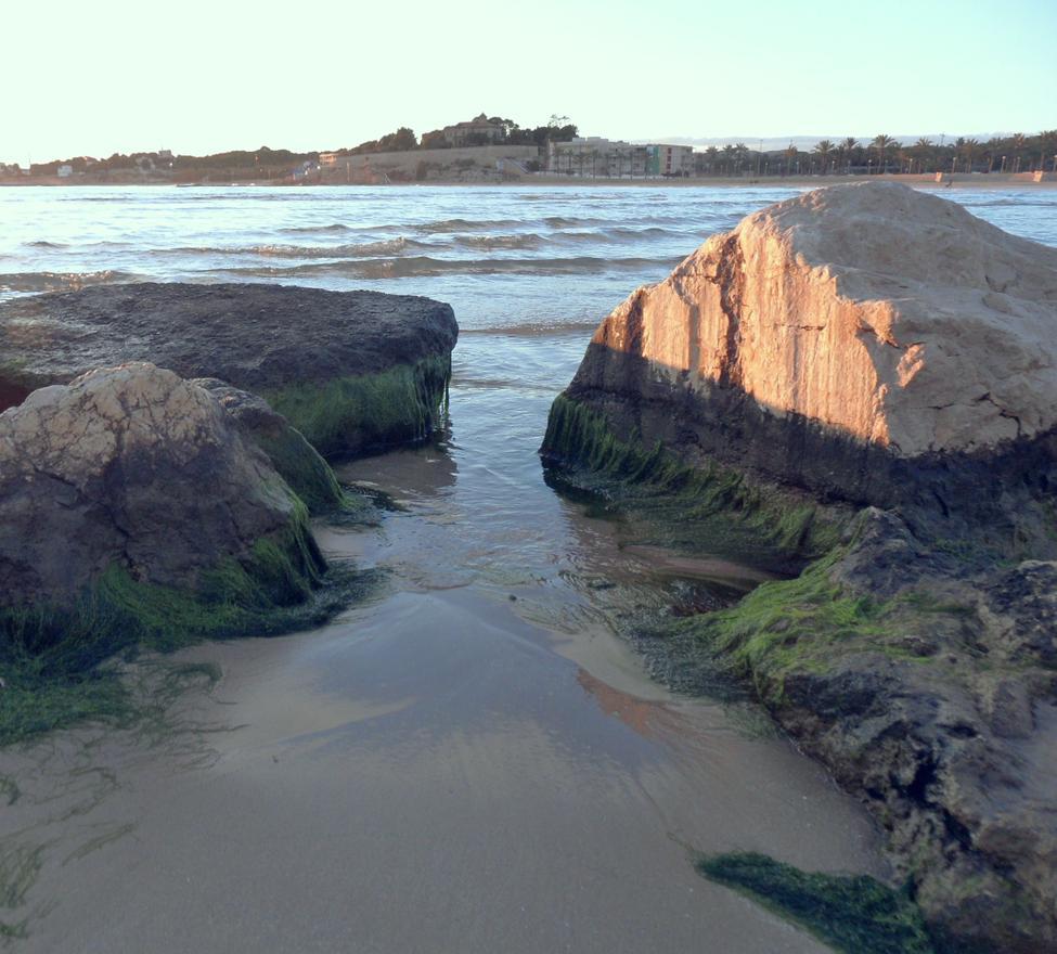 Foto playa S'Adarró.