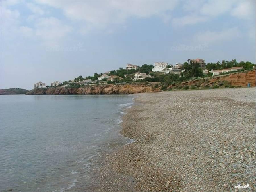 Foto playa Isla Plana.
