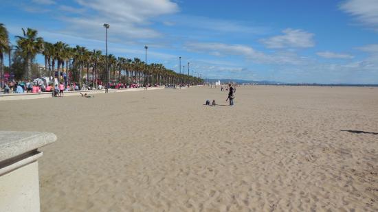 Playa La Higuerica