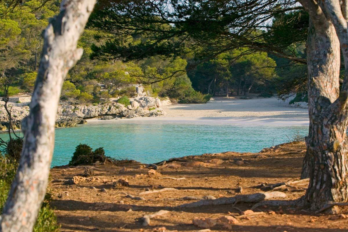 Foto playa Cala Macarelleta.
