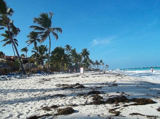 Foto playa Punta Gorda.