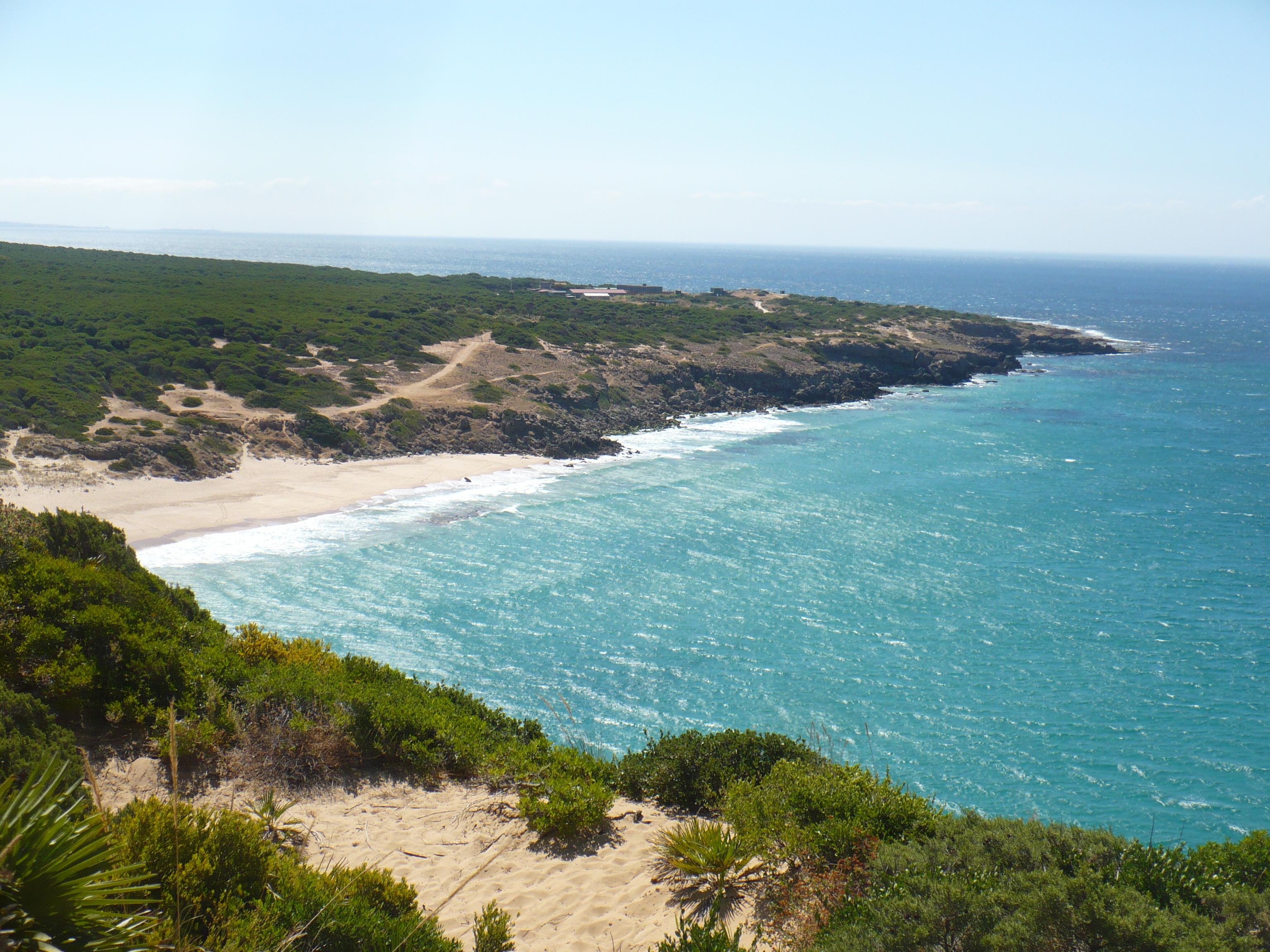 Playa Playa de Punta del Palo