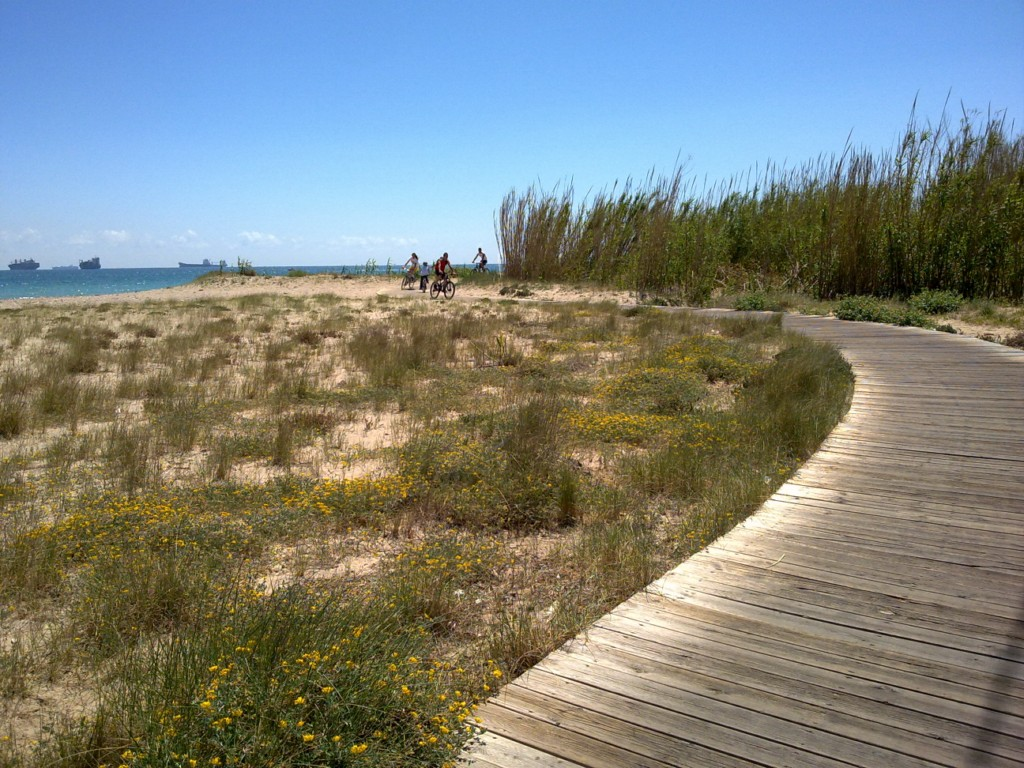Foto playa El Rosadero.