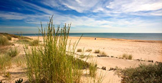 Foto playa El Viejo.