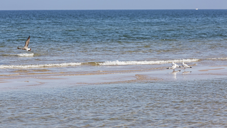 Playa Playa de Esquinzo / Playa de la duna