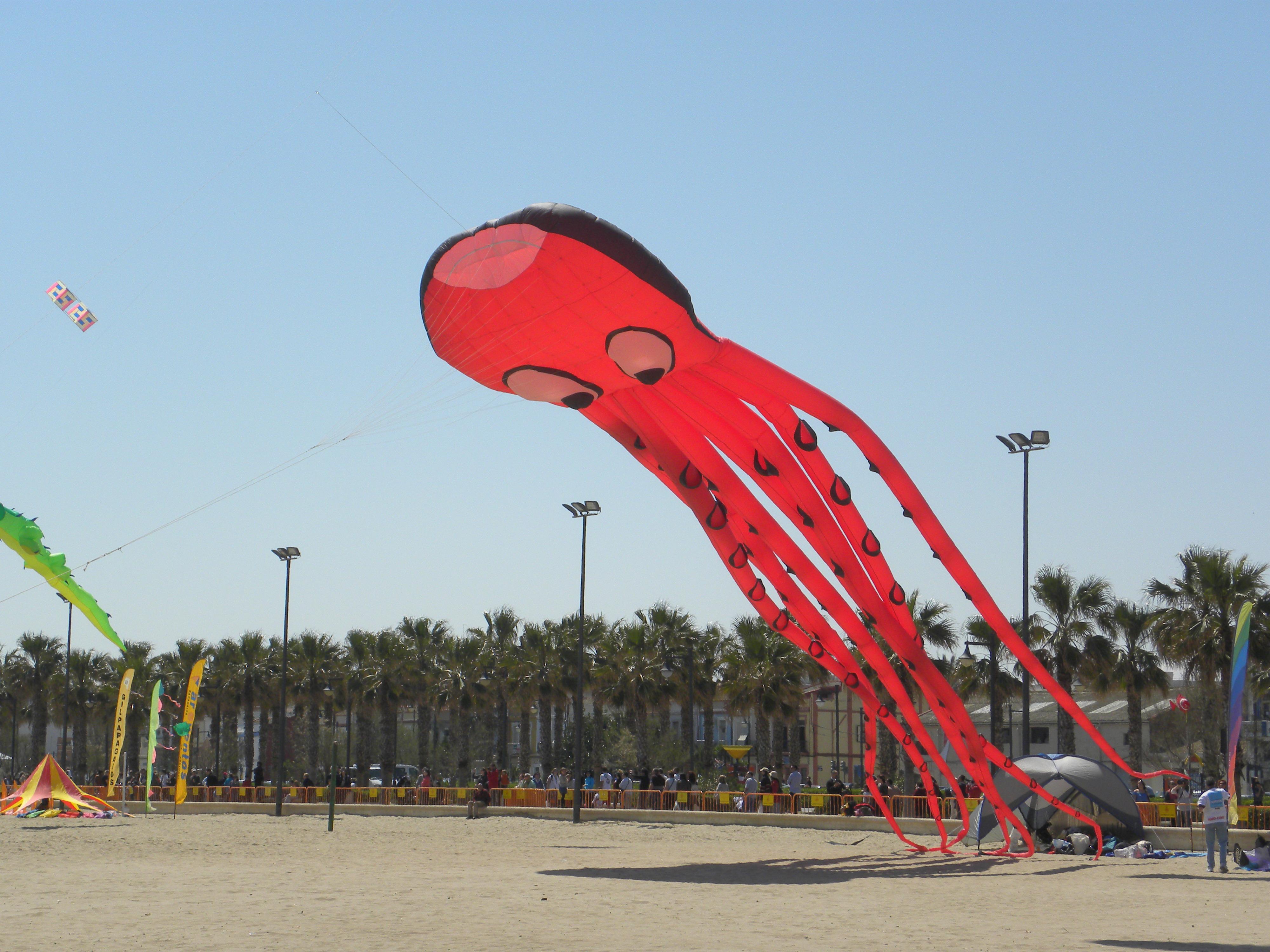 Foto playa Las Arenas. El pulpo PAUL., ha acertado : ESPAÃ'A ES CAMPEONA DEL MUNDO