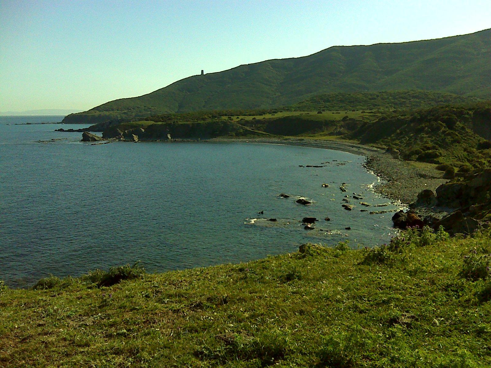 Foto playa Cala Arenas. Cala