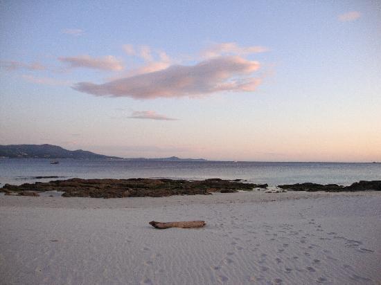 Foto playa La Arena.