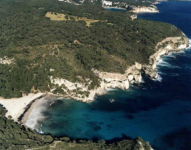 Foto playa Playa de Punta Larga.