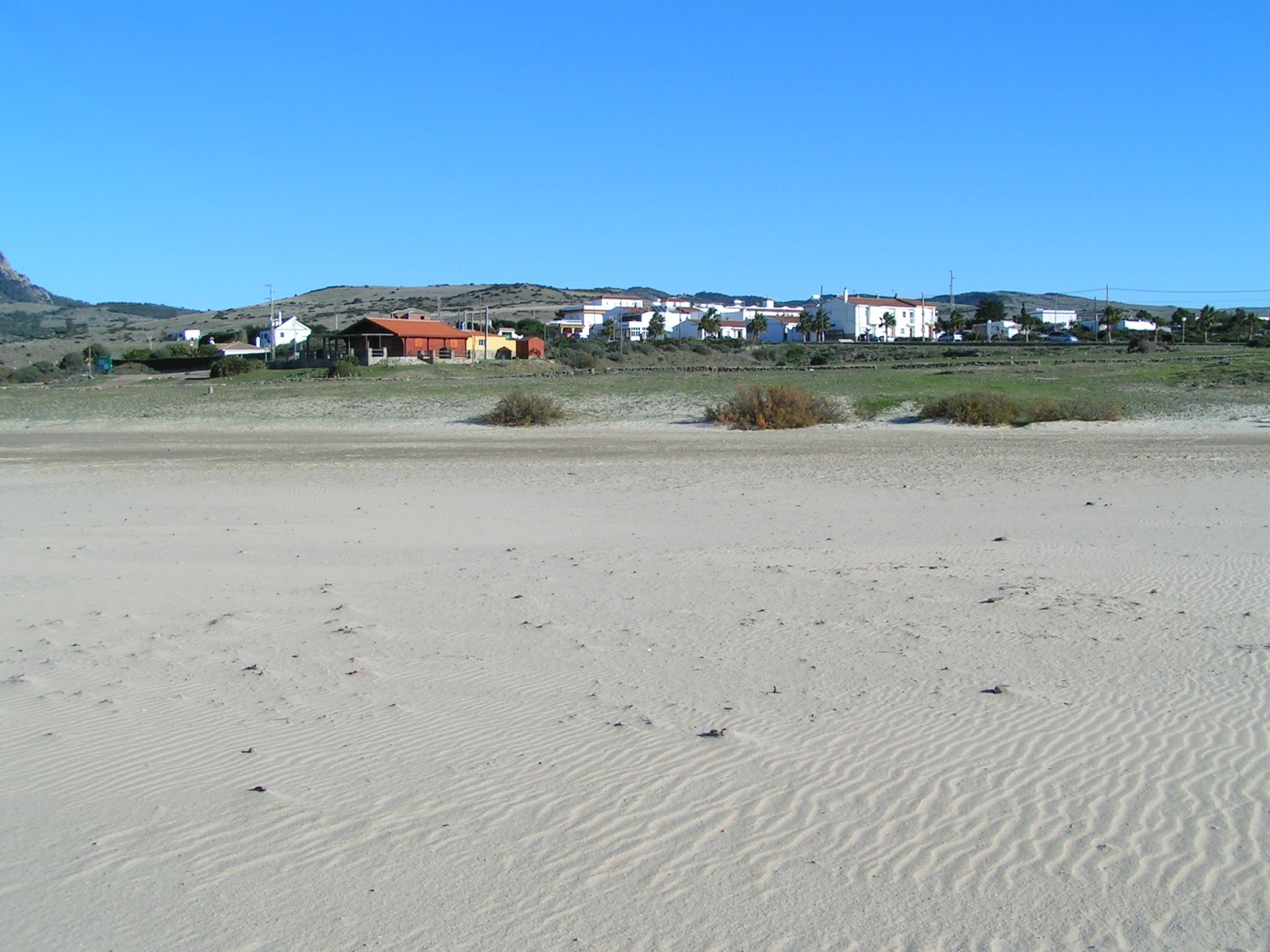 Foto playa Bolonia. El Santiscal - El Lentiscal: La Playa de Bolonia, Cádiz