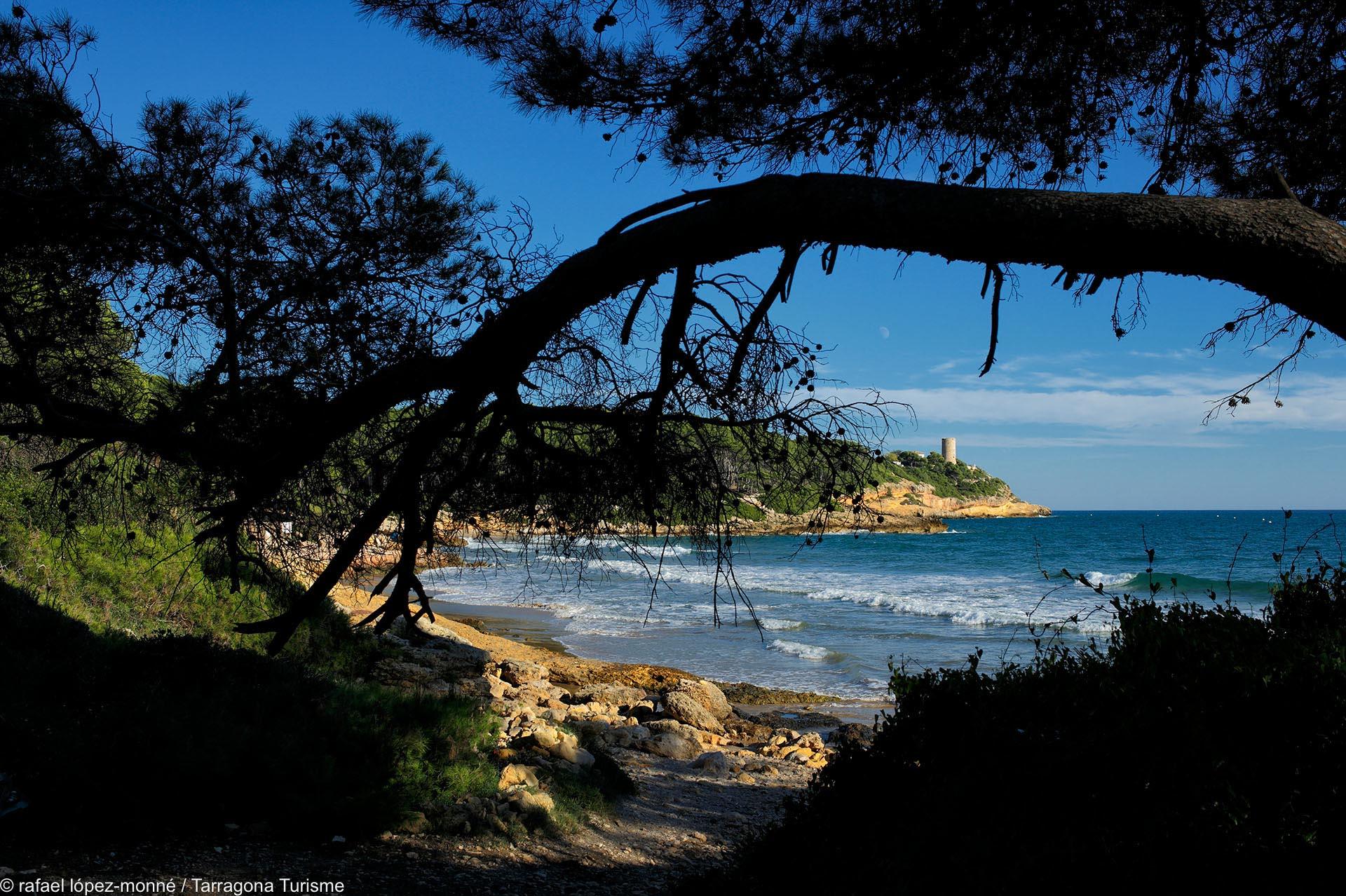 Playa Cala de la Roca Plana