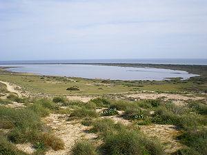 Foto playa Punta Entinas Sabinar.