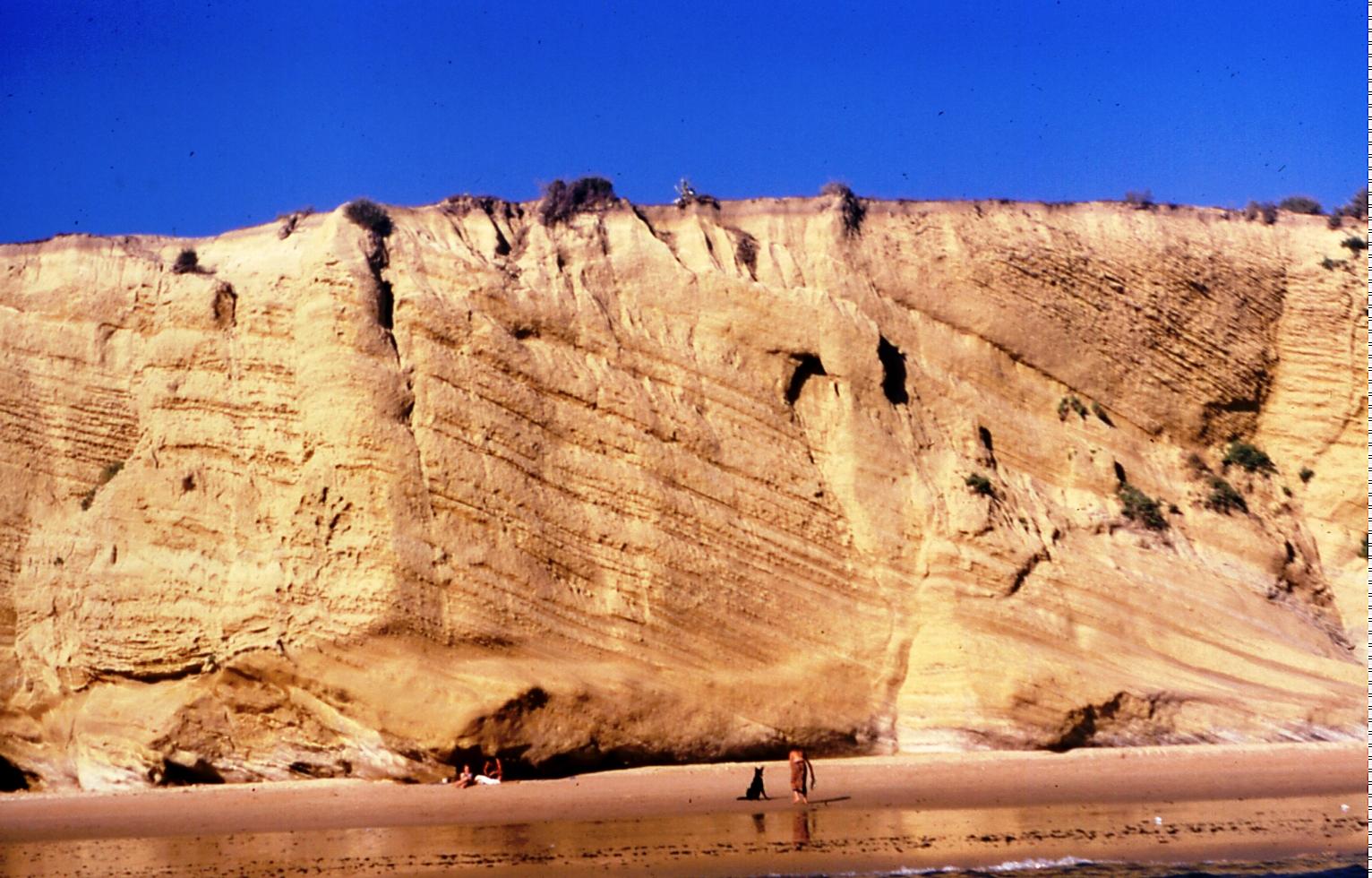 Foto playa Los Alemanes. Pantano del Aguila
