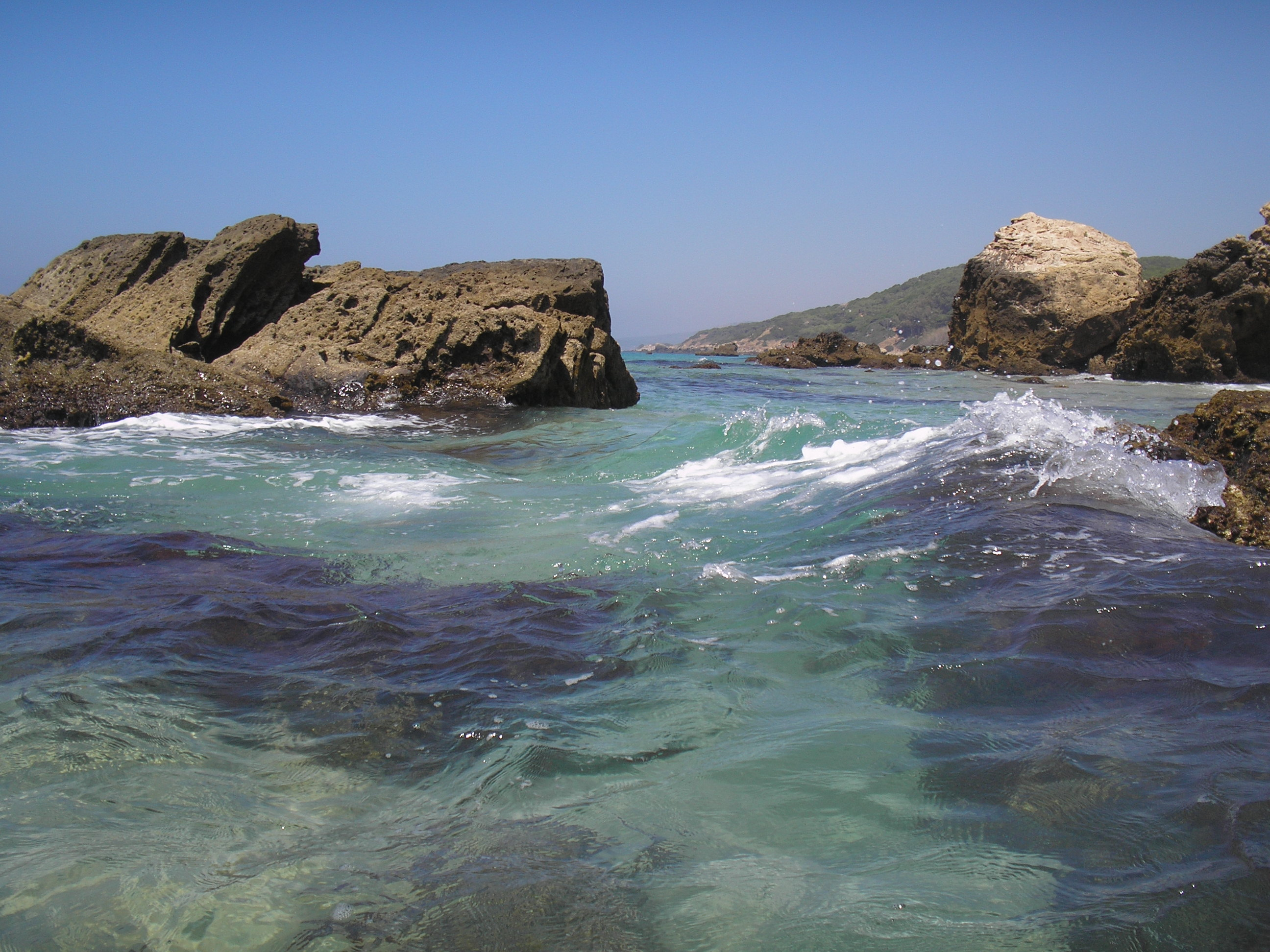 Foto playa Los Alemanes. paloma baja