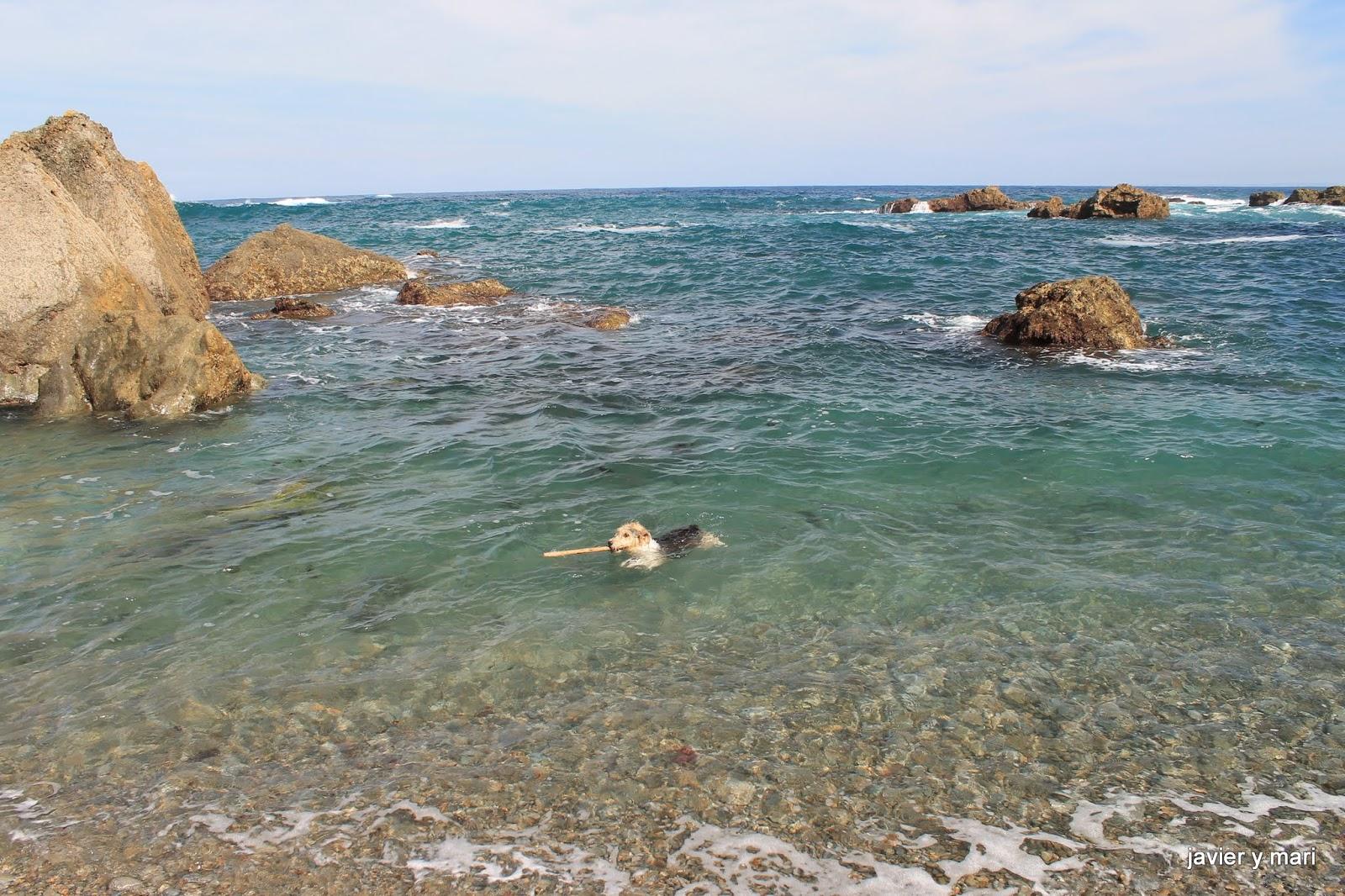 Foto playa Gradas.
