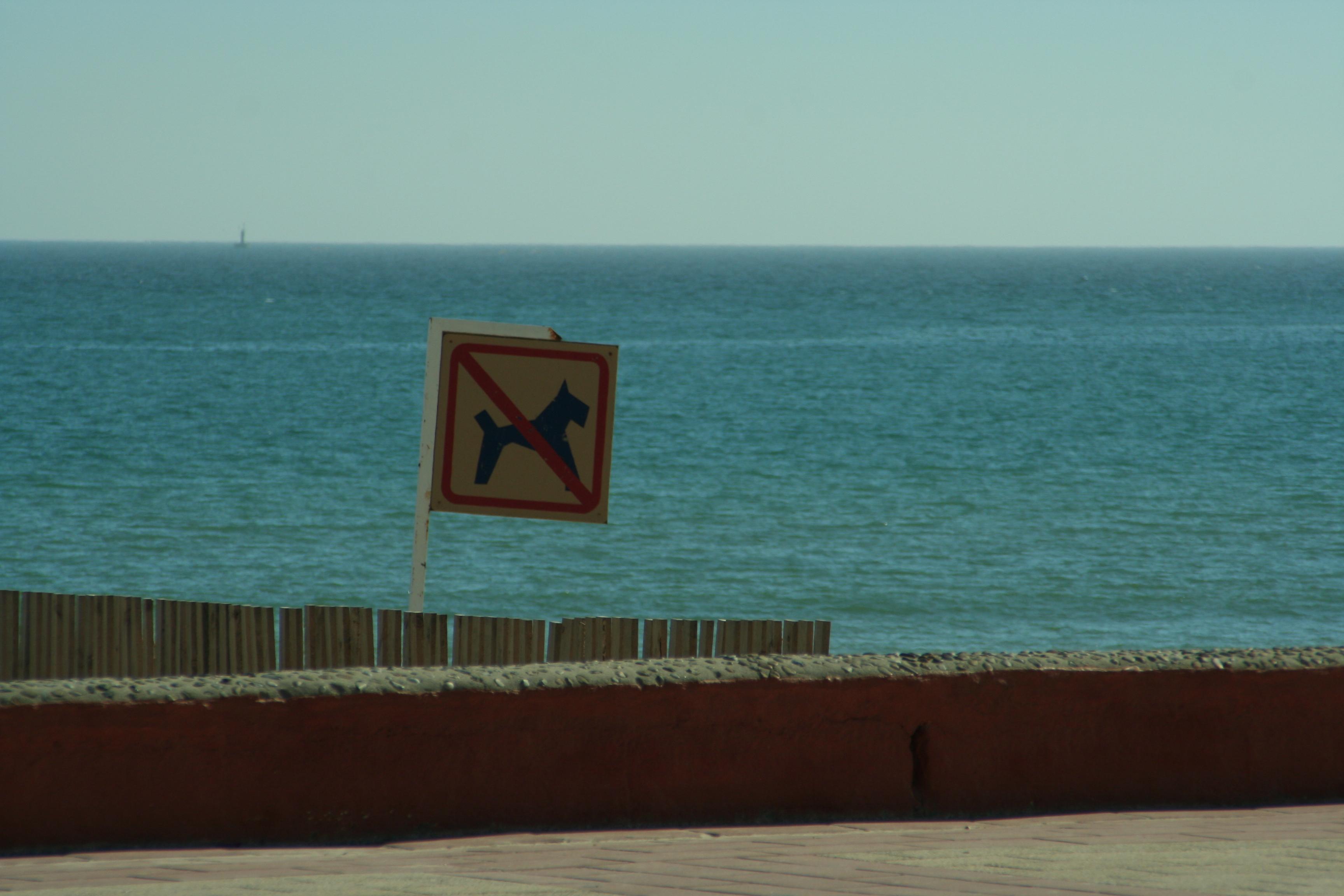 Foto playa El Carmen.