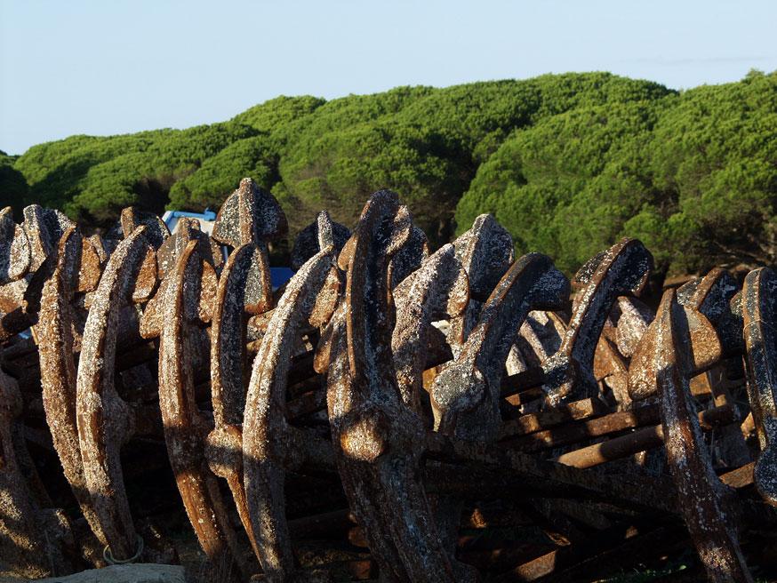 Foto playa Hierbabuena. Barbate