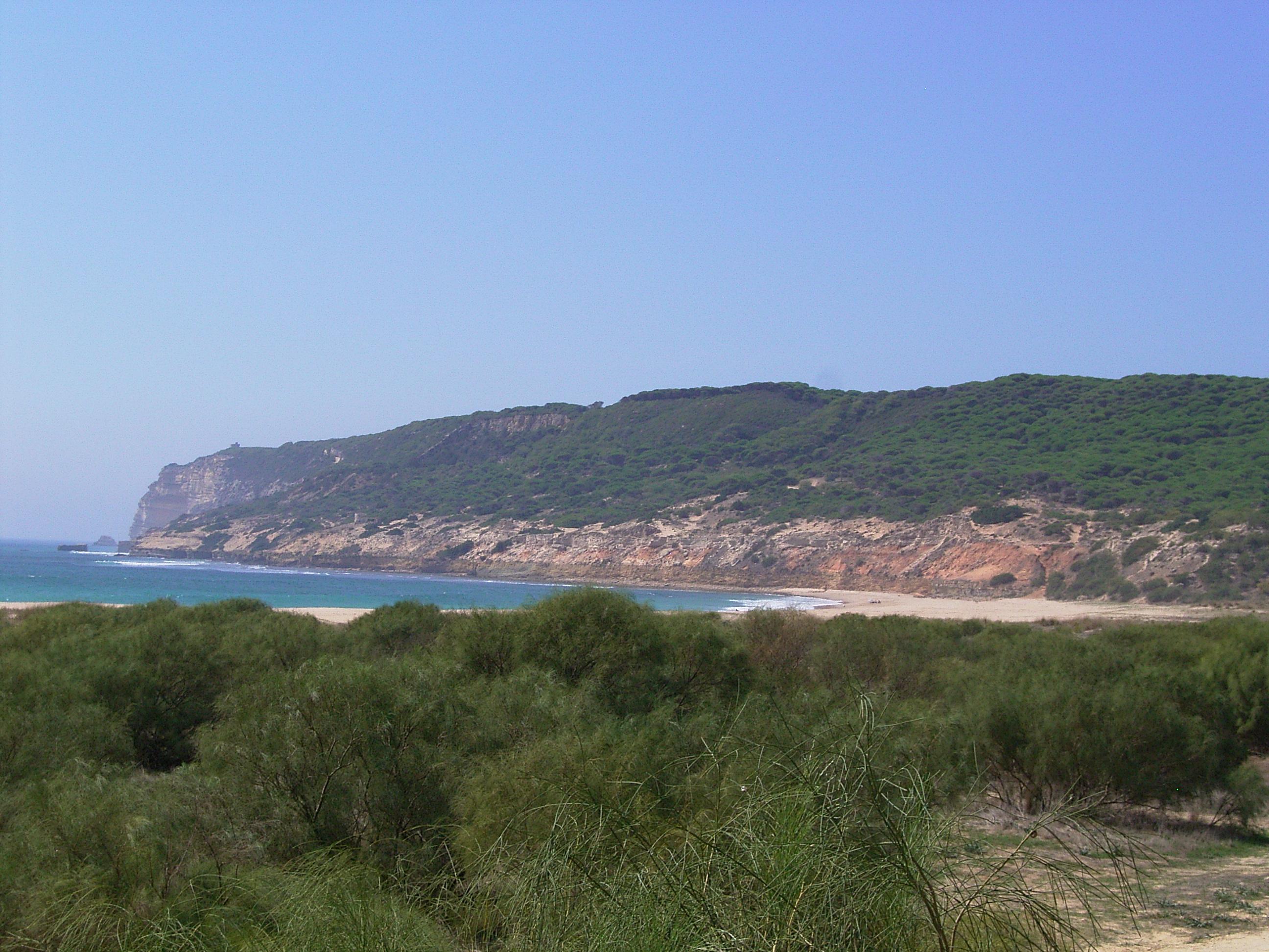 Foto playa Hierbabuena. Barbate - Playa de Hierbabuena