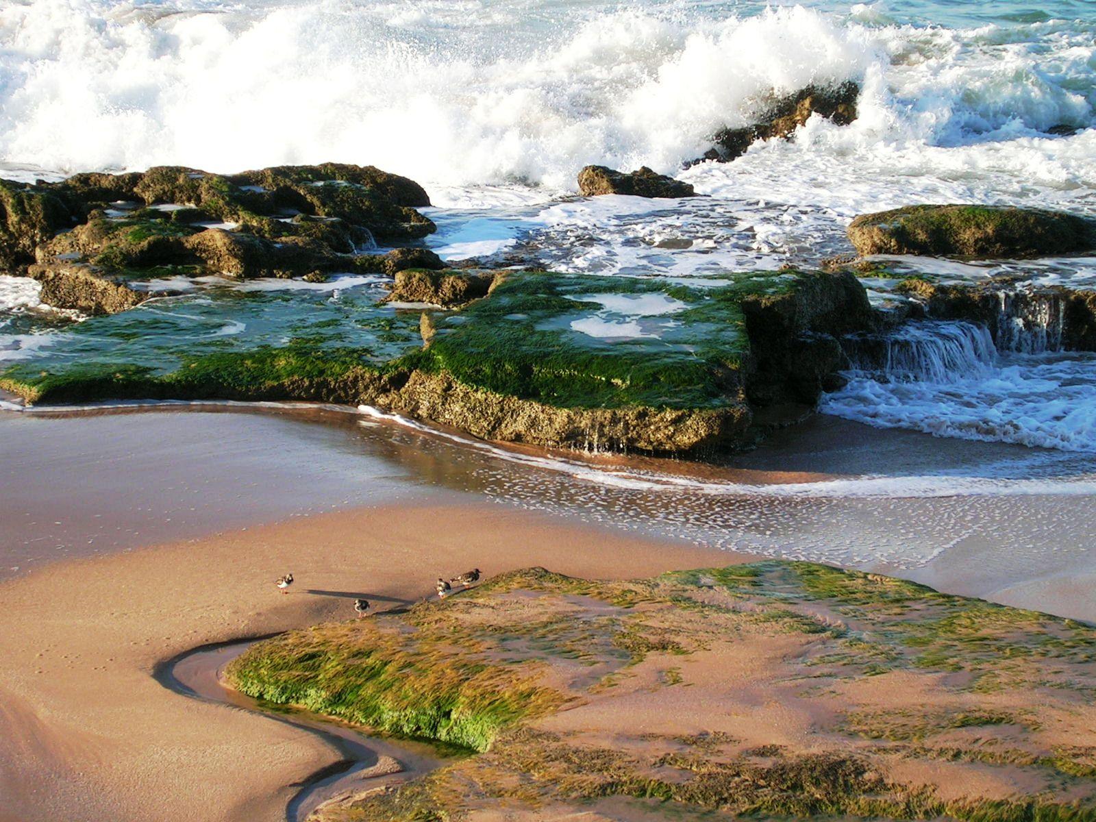 Foto playa Caños de Meca / Los Caños de Meca. Cabo de Trafalgar