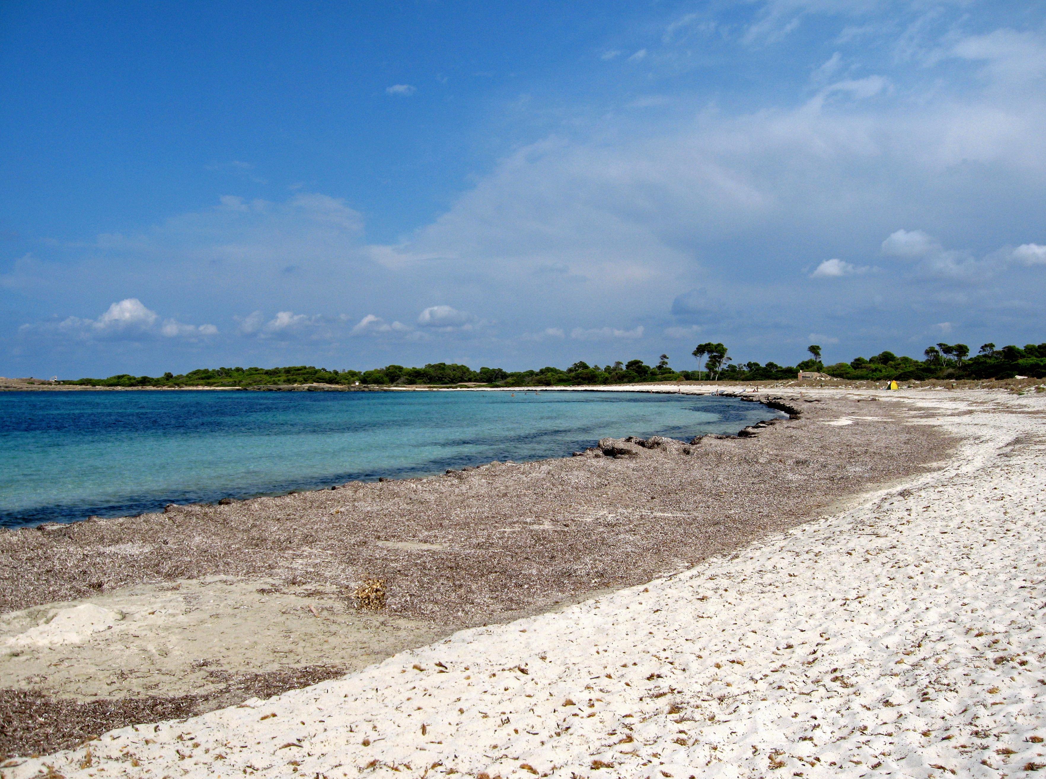 Playa Platja de les Salines